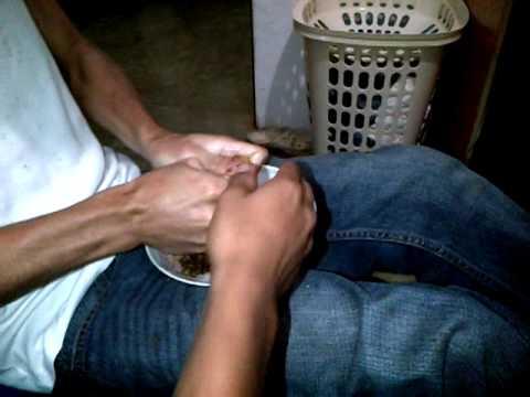 preparando una picadura de narguile jajajajajajaja.3GP