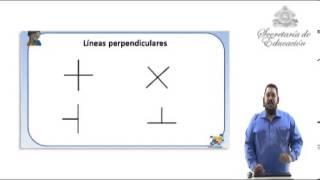 Lneas paralelas y perpendiculares  YouTube
