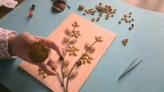 Cuadro con semillas y ramas