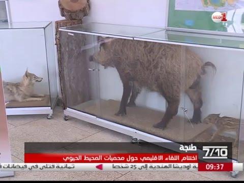 فيديو .. زيارات ميدانية لمحميات جهة طنجة تطوان الحسيمة
