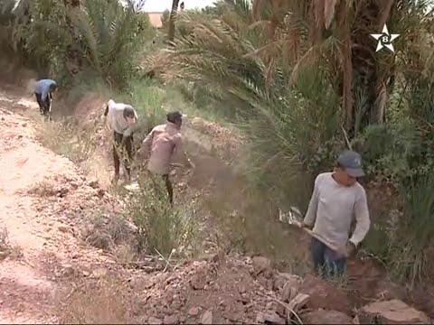 تنغير : سوء تدبير مياه الري في الواحات