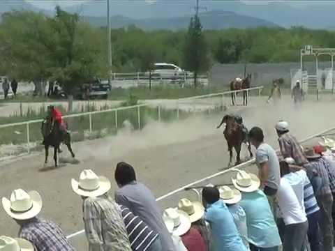 carreras de caballos el cerrito mayo 2014