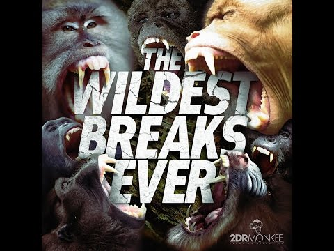Monkee 2DR | THE WILDEST BREAKS EVER [Bboy Mixtape for 2015]