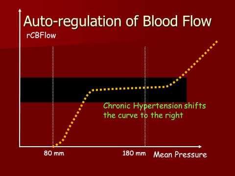 Autoregulation of Cerebral Blood