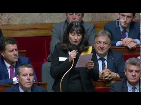 Mme Laurence Trastour-Isnart - « Affaire Benalla »