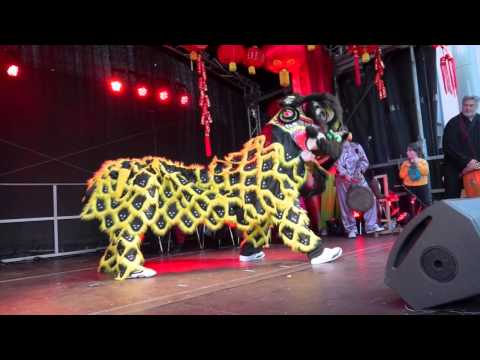 Lion Dancing Ireland Lion Dance to Celebrate The