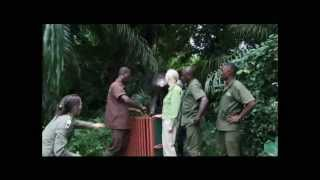 Chimpanzé se Despede e Abraça Mulher que a Salvou