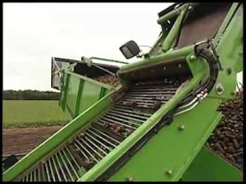AVR Potato harvester Spirit 6100 - single row bunker offset harvester