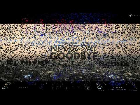 Mightyfools vs Hardwell vs Martin Garix - Never Say Goodbye(DJ Nivek remix)