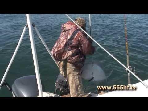 Морская рыбалка с Константином Каллиным.