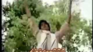 Best Song Bhole O Bhole Yaarana