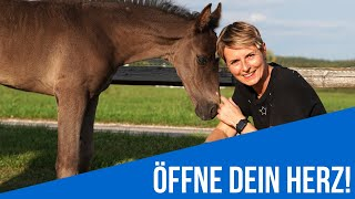 Öffne dein Herz! - ROCK YOUR DREAMS!®
