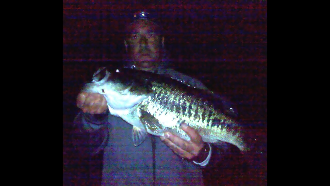 Night time bass fishing with dr todd curry youtube for Best time for bass fishing