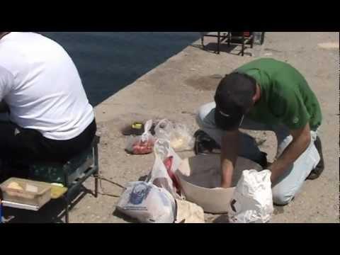 ψαρεμα απικο