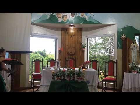 Santa Missa | 22.12.2020 | Terça-feira | Padre José Sometti | ANSPAZ