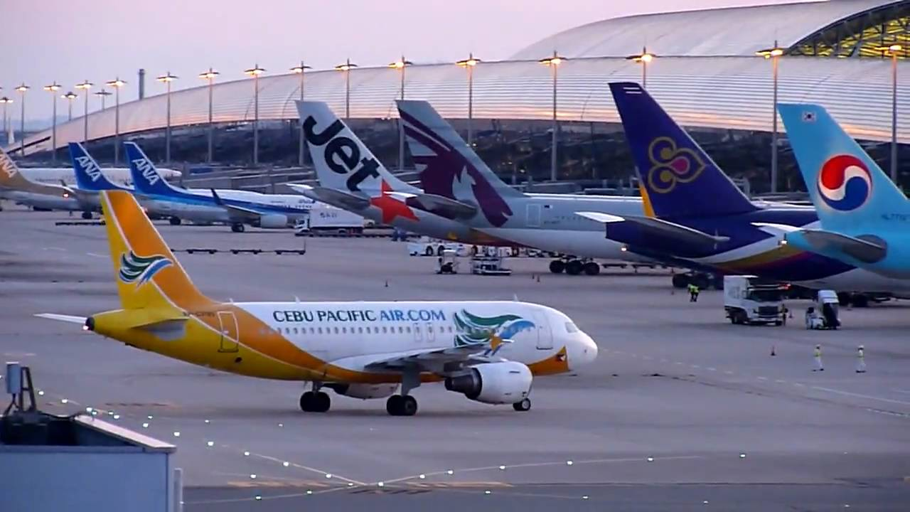 cebu pacific air See amazing deals on cebu pacific air flight booking at goibibocom check on your trip details like flight schedule, airfare, reservation status, baggage info, online check-in and more.