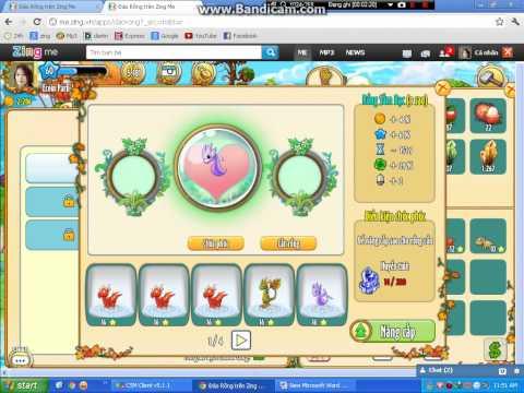 Cách bug chúc phúc rồng... Đảo Rồng trên Zing me =))