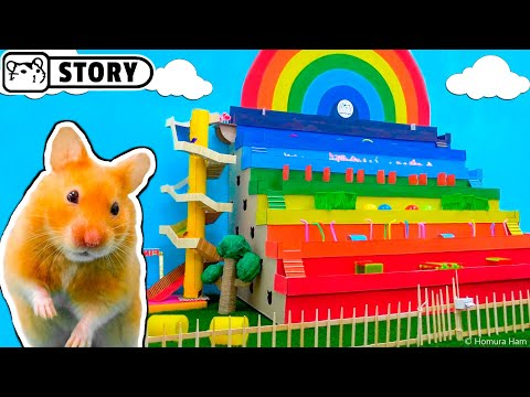Rainbow STEPPED MAZE (Obstacle Course) for Hamster ️🌈 Rainbow Pyramid Maze ️