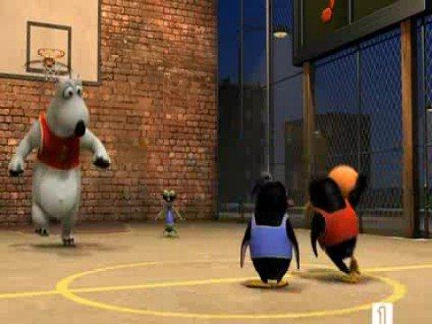 Medveď Bernard - Basketball