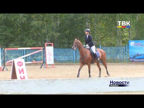 Удержаться в седле и преодолеть барьеры: в Бердске прошел пятый «Открытый кубок клубов Новосибирской области» по конному спорту