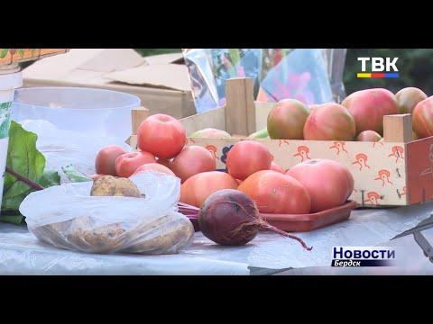 Проход стал свободней. Рейды по уличной торговле возле ТЦ «Меркурий» Бердска дают свои плоды