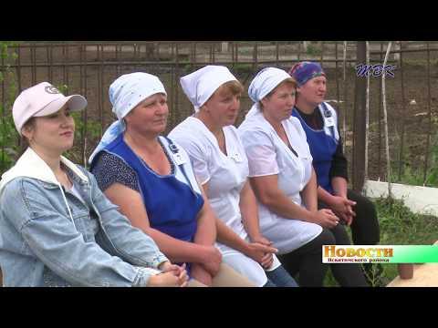 Конкурс лучших дояров и осеменаторов коров в Искитимском районе завершился победой финалистов прошлых лет