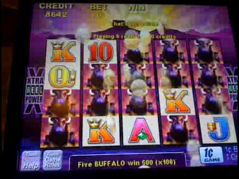 buffalo slot machine wins