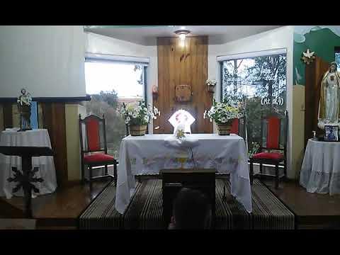 Santa Missa | 12.08.2021 | Quinta-feira | Padre Robson Antônio | ANSPAZ