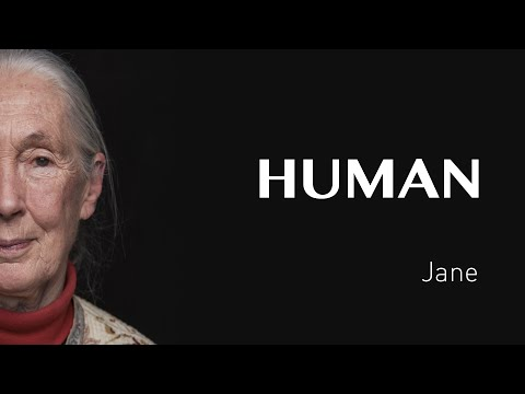 Jane Goodall - Human the movie