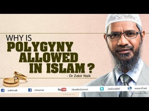 polygamy in islam essay