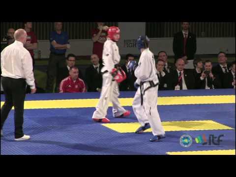 ITF Taekwon-Do Free Sparring