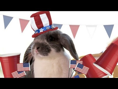 Did You Ever Think Bunnies Were This Patriotic?