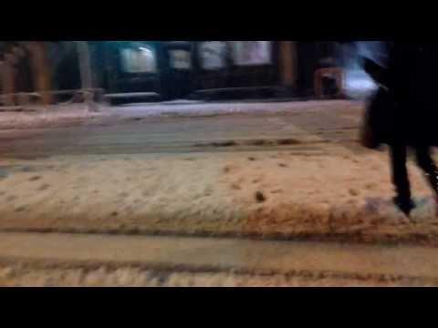 Living in Japan: snow in Tokyo!