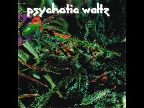 Psychotic Waltz - All The Voices