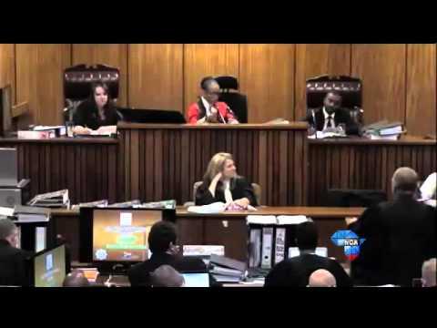 Oscar Pistorius Trial: Nel accuses Pistorius of changing defence