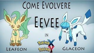 Come Far Evolvere Eevee In Glaceon / Leafeon Pokemon X E