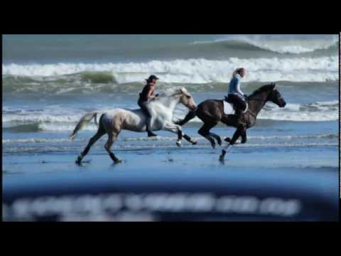AMAZING BEACH DAY- GALLOPING BAREBACK & BRIDLELESS