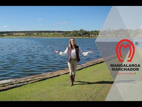 """Nesta edição, acompanhe as reportagens sobre as exposições nas cidades mineiras de Caxambu e Oliveira. Saiba mais sobre o critério de avaliação """"Gesto de Marcha"""". Não perca! É neste domingo (16/06) no MMTV, pelo Canal Rural."""