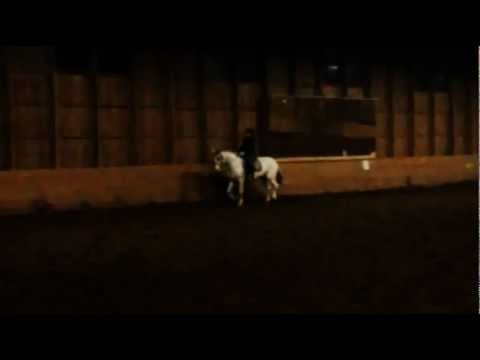 Dressage with Pilkku 12.11.2011