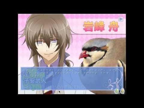 Pigeon dating sim