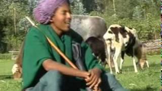 Aweqe Kasahun - Shimlale ሽምላሌ (Agew Amharic)