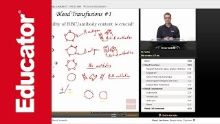 """Blood"" 