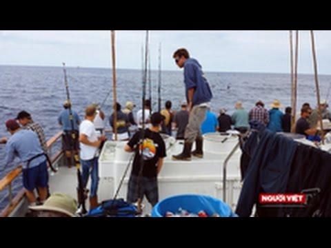 Đi câu cá 'Sportfishing' nơi lãnh hải Mỹ Mexico