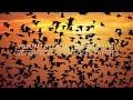 Poema Náhuatl-Lenguas Indígenas