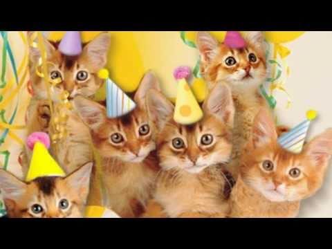 Cute Cats Sing
