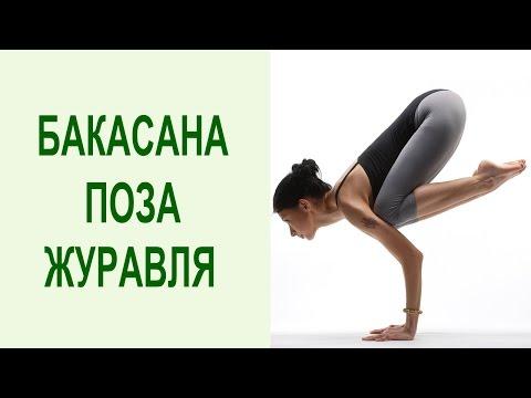 Бакасана. Техника Освоения от Дмитрия Зубарева