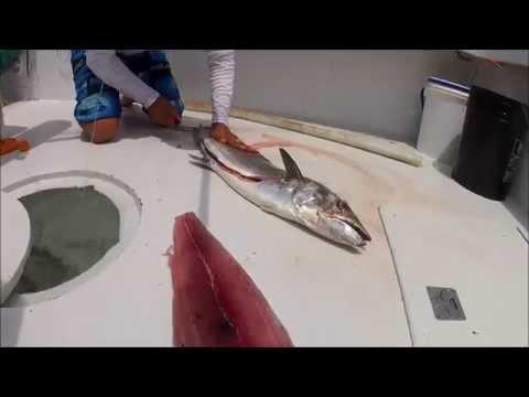 Sport Fishing Charter in Los Suenos Costa Rica