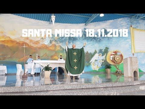 Santa Missa | 18.11.2018 | Padre José Sometti | ANSPAZ