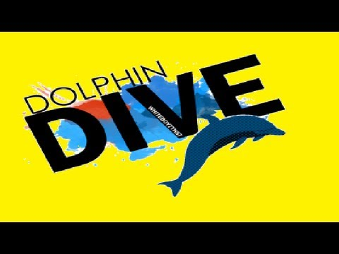 DOLPHIN DIVE MONTAGE!
