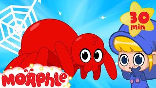 My Scary Pet Spider! Morphle becomes a spider superhero! My Magic Pet Morphle Animation for kids